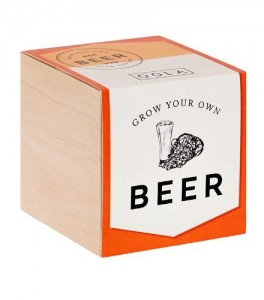 Grow Your Own Beer, Joy the Store, £9